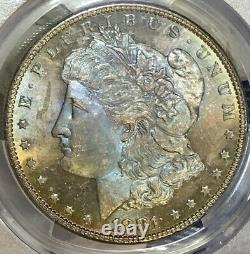1881-P Morgan Dollar PCGS MS64 CAC Baby Blue Rainbow Toned Lustrous PL/Semi PL
