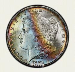 1881-S Morgan Dollar PCGS MS64 Ultra Lustrous Colorful Rainbow Toned Bowl Toner