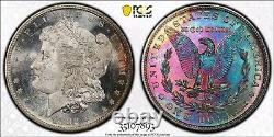 1882-S Morgan Dollar PCGS MS64+ Snow Cameo Rainbow Toned DMPL/Proof Like Fields