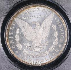 1885 Morgan Silver Dollar Coin Pcgs Ms65 Dmpl Deep Mirror Prooflike Ogh Rattler
