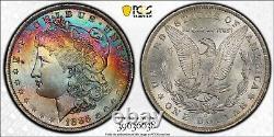1885-O Morgan Dollar PCGS MS65 CAC Rainbow Toned Gem Fully Toned Obverse