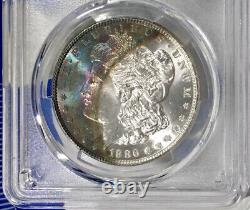 1886-P Morgan Dollar PCGS MS65 Ultra Colorful Navy Blue Fuchsia Rainbow Toned