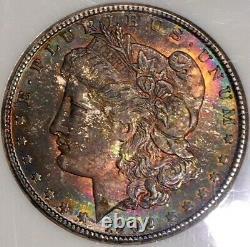 1902-O Morgan Dollar NGC MS64 Tie Dye Rainbow Toned